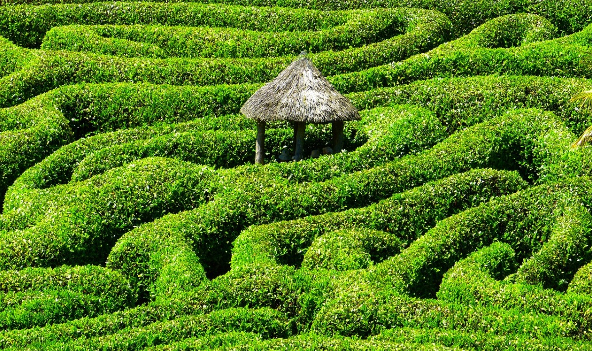 3_reasons_you_probably_shouldnt_be_asking_how_to_make_a_living_doing_what_you_love_maze